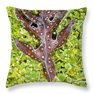 Plant Details Throw Pillow by Tim Hester
