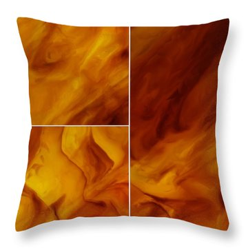 Serenity Throw Pillow by Tom Druin