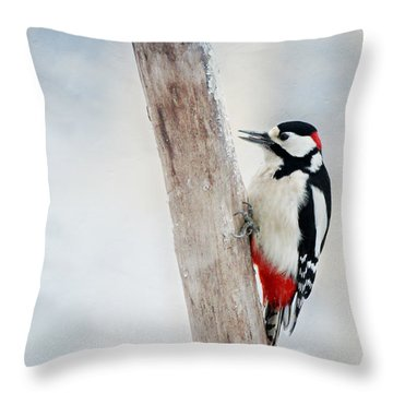 Woodpecker Throw Pillow by Heike Hultsch