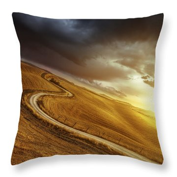 A Country Road In Field At Sunset Throw Pillow by Evgeny Kuklev