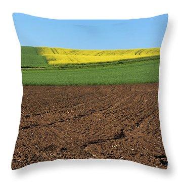 Agricultural Landscape. Auvergne. France. Throw Pillow by Bernard Jaubert