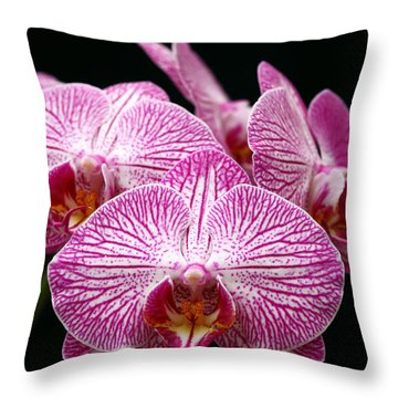 Moth Orchid Throw Pillow by James Brunker