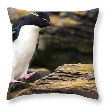 Rockhopper Penguin Throw Pillow by John Shaw