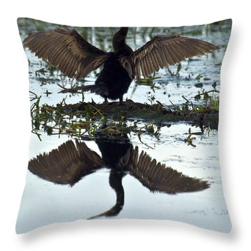 Anhinga Throw Pillow by Mark Newman