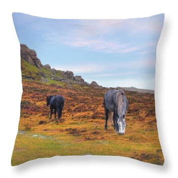 Dartmoor Throw Pillow by Joana Kruse