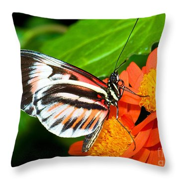 Piano Key Butterfly Throw Pillow by Millard H. Sharp