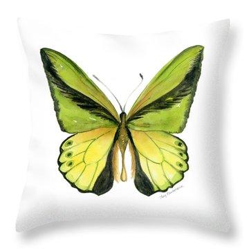 8 Goliath Birdwing Butterfly Throw Pillow by Amy Kirkpatrick