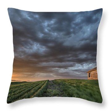 Newly Planted Crop Throw Pillow by Mark Duffy