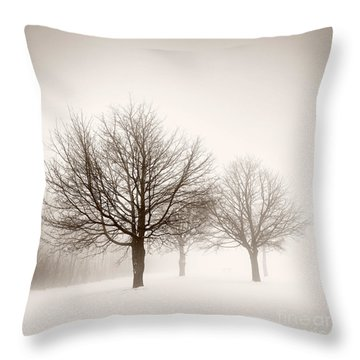 Winter Trees In Fog Throw Pillow by Elena Elisseeva