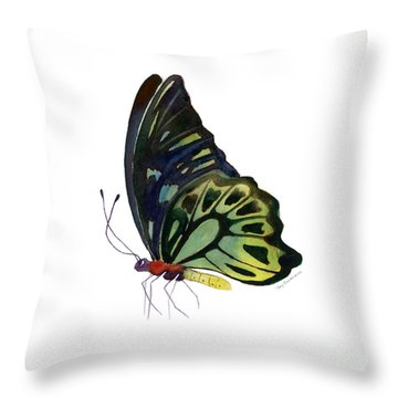 97 Perched Kuranda Butterfly Throw Pillow by Amy Kirkpatrick