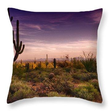 A Beautiful Desert Evening  Throw Pillow by Saija  Lehtonen