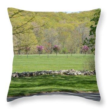 A Beautiful Landscape Throw Pillow by Sonali Gangane