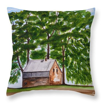 A Beautiful Place On Earth Throw Pillow by Christine Huwer