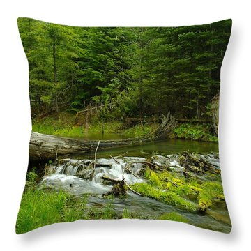 A Beaver Dam Overflowing Throw Pillow by Jeff Swan