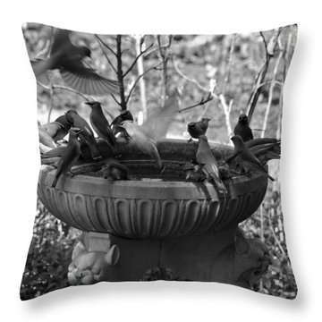 A Bevy Of Birds In Black And White Throw Pillow by Suzanne Gaff