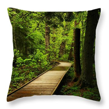 A Boardwalk To Paradise Throw Pillow by Jeff Swan