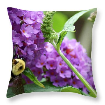 A Bumblebee In The Garden Throw Pillow by Kim Pate