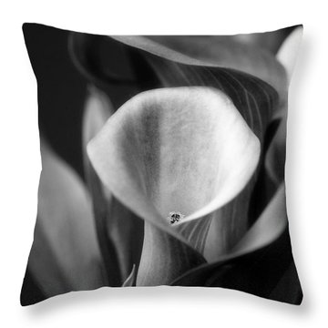 A Caress For Daraa Throw Pillow by Floyd Menezes
