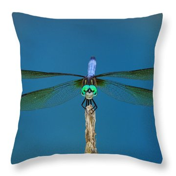 A Dragonfly IIi Throw Pillow by Raymond Salani III