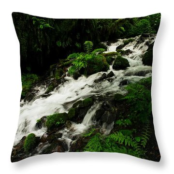 A Fern On An Isalnd  On Wahkeena Creek Throw Pillow by Jeff Swan
