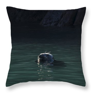 A Fine Day For A Swim Throw Pillow by Anne Gilbert