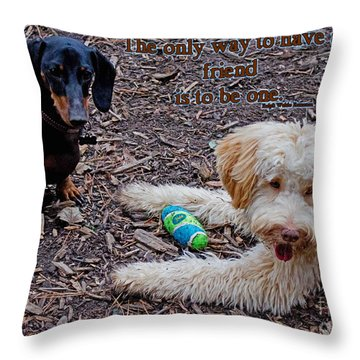 A Friend Throw Pillow by Sandra Clark