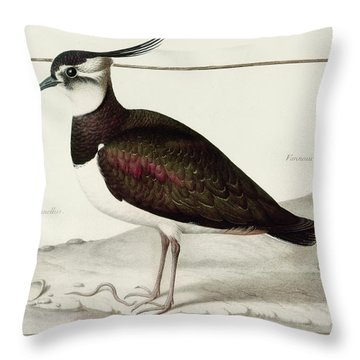 A Lapwing Throw Pillow by Nicolas Robert