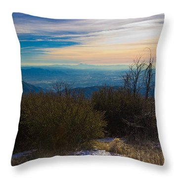 A Late Winter's Afternoon Throw Pillow by Heidi Smith