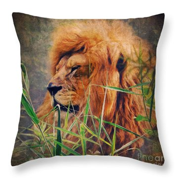A Lion Portrait Throw Pillow by Angela Doelling AD DESIGN Photo and PhotoArt