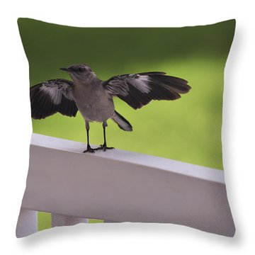 A Little Visitor Northern Mockingbird Throw Pillow by Terry DeLuco