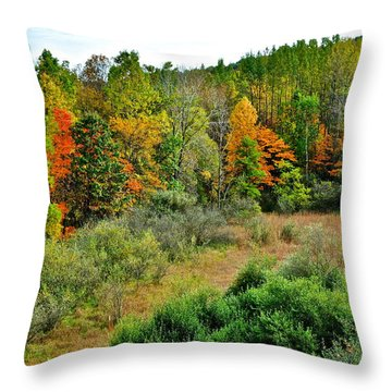 A Lofty Perch Throw Pillow by Frozen in Time Fine Art Photography