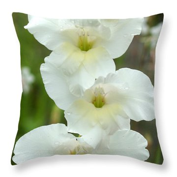 A Lovely White With A Hint Of Yellow Gladiolus Throw Pillow by Kim Pate