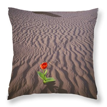 A New Beginning Throw Pillow by Mike McGlothlen