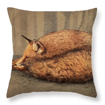 A Quiet Place Throw Pillow by Eric Fan