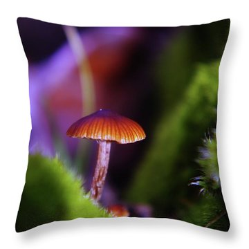 A Red Mushroom  Throw Pillow by Jeff Swan