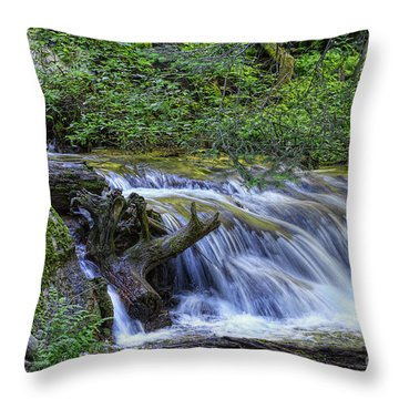 A Restful Stream Throw Pillow by Priscilla Burgers