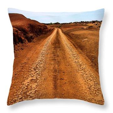 A Road Less Traveled Throw Pillow by DJ Florek