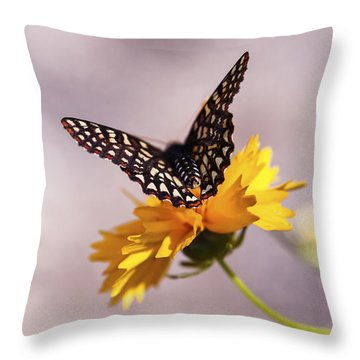 A Sip Of Coreopsis Throw Pillow by Caitlyn  Grasso
