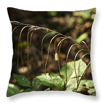 A Speck In God's Eye Yet Precious In His Sight Throw Pillow by Mother Nature