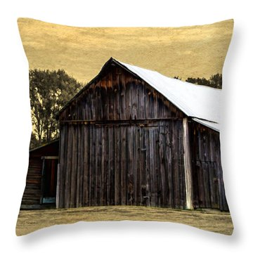 A Step Out Of Time Throw Pillow by Jordan Blackstone