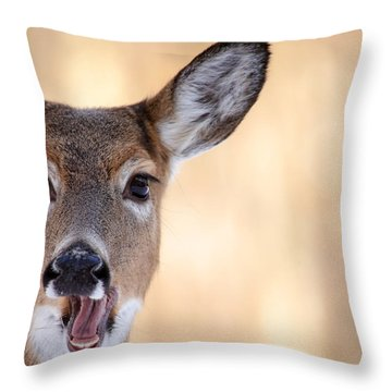A Talking Deer Throw Pillow by Karol Livote