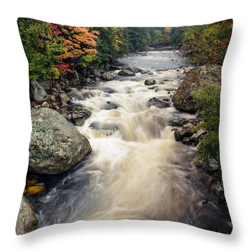 A Touch Of Fall Throw Pillow by Mark Papke