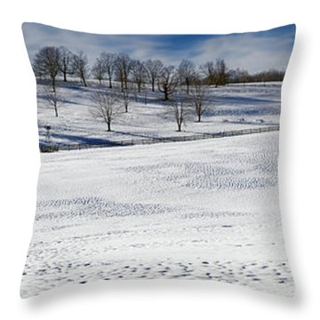 A Winters Day Throw Pillow by Bill Wakeley