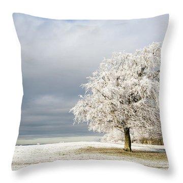 A Winter's Morning Throw Pillow by Anne Gilbert