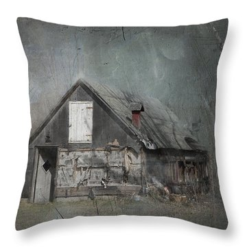 Abandoned Shack On Sugar Island Michigan Throw Pillow by Evie Carrier