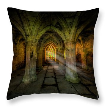 Abbey Sunlight Throw Pillow by Adrian Evans