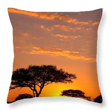 African Sunset Throw Pillow by Sebastian Musial