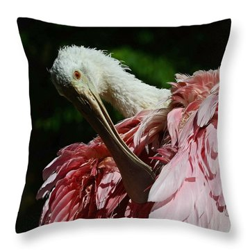 After The Bath Throw Pillow by Stuart Harrison