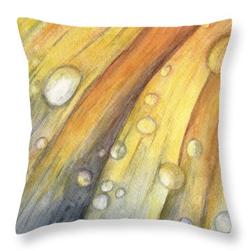 After The Rain Throw Pillow by Carol Warner