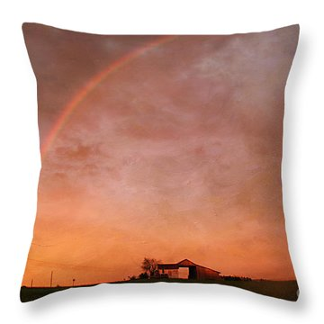 After The Storm Throw Pillow by Darren Fisher